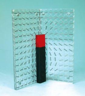 PH0803 Magnetic Field Demonstrator